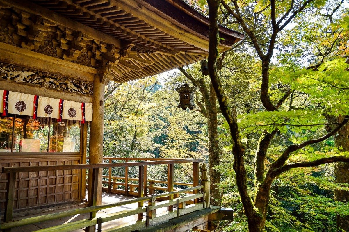 Пазл Собирать пазлы онлайн - Японский пейзаж