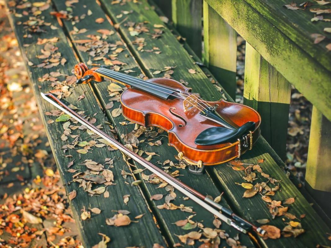 Пазл Собирать пазлы онлайн - Забытая скрипка