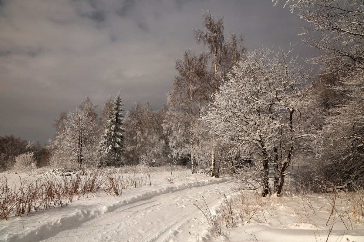 Пазл Собирать пазлы онлайн - Зимняя дорога