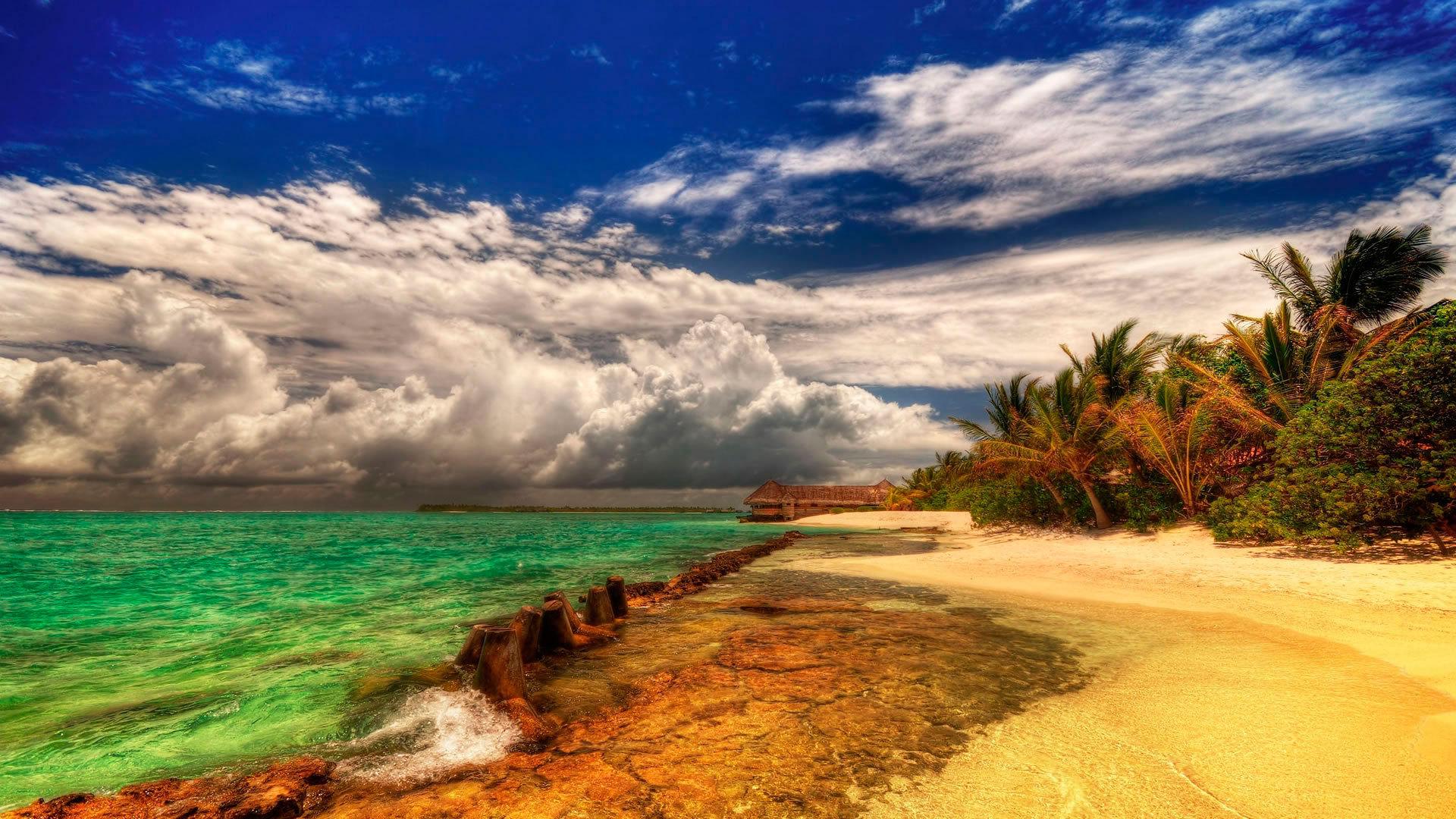 природа море побережье без регистрации