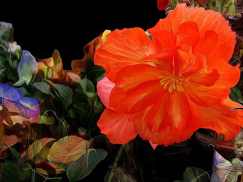 Пазл Собирать пазлы онлайн - Аленький цветочек