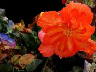 Собирать пазл Аленький цветочек онлайн