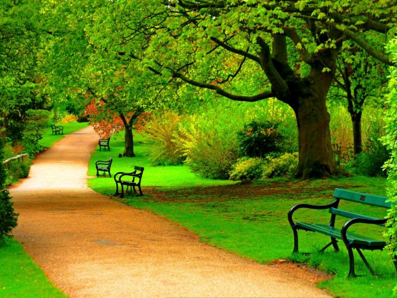Пазл Собирать пазлы онлайн - Аллея  в парке