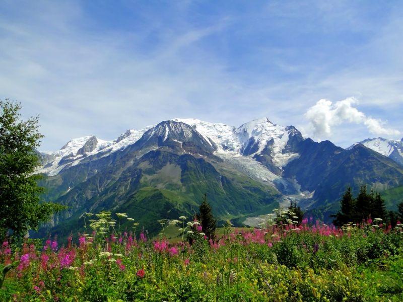 Пазл Собирать пазлы онлайн - Альпийские луга