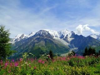 Собирать пазл Альпийские луга онлайн