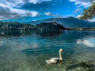 Собирать пазл Альпийское озеро онлайн