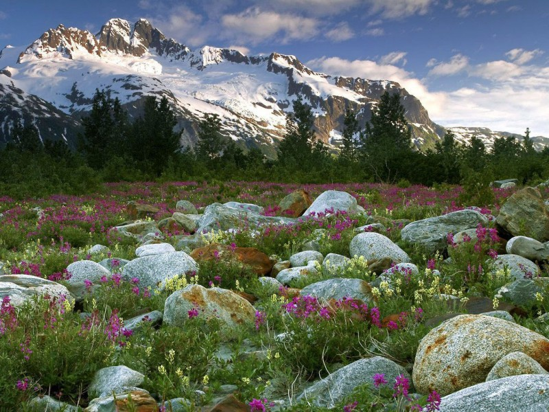 Пазл Собирать пазлы онлайн - Горы на Алтае