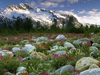 Собирать пазл Горы на Алтае онлайн