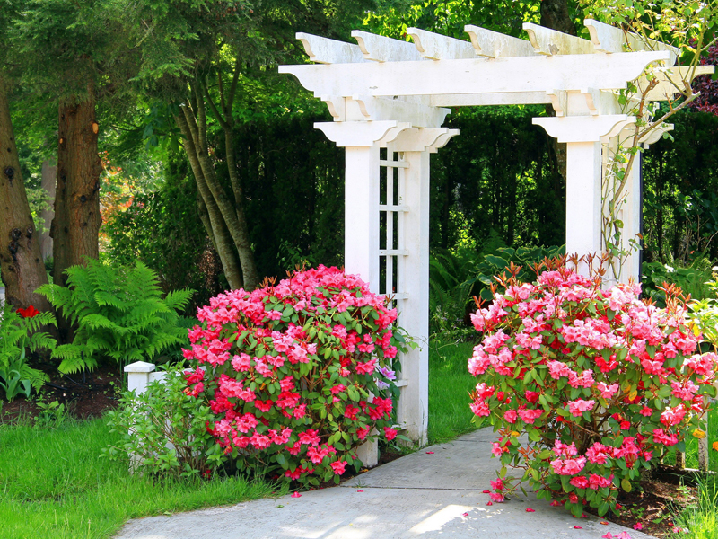 Пазл Собирать пазлы онлайн - Арка в саду