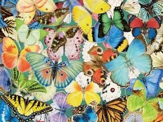 Собирать пазл Бабочки онлайн