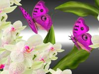 Собирать пазл Бабочки и орхидеи онлайн