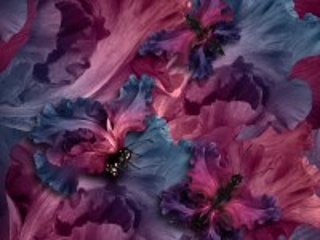 Собирать пазл Бабочки из цветов онлайн