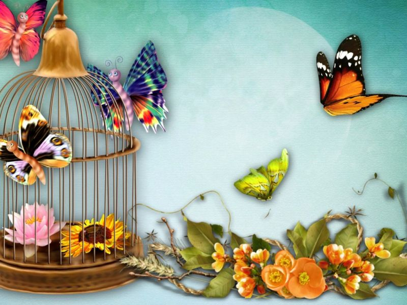 Пазл Собирать пазлы онлайн - Бабочки коллаж