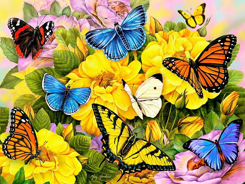 Пазл Собирать пазлы онлайн - Бабочки на цветах
