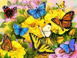 Собирать пазл Бабочки на цветах онлайн