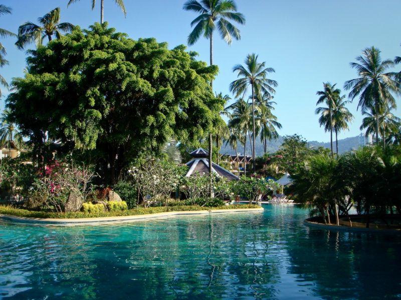 Пазл Собирать пазлы онлайн - Бассейн пальмы