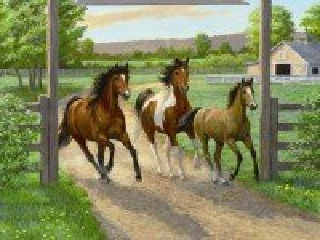 Собирать пазл Бегущие кони онлайн