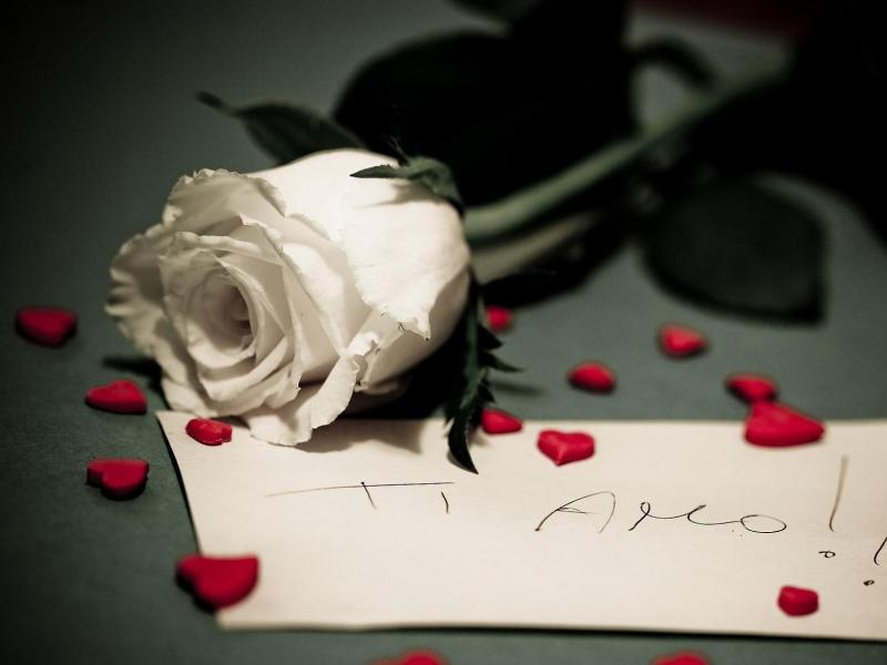 Пазл Собирать пазлы онлайн - Белая роза