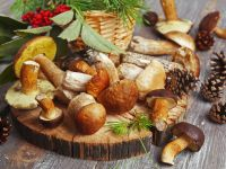 Собирать пазл Белые грибы онлайн