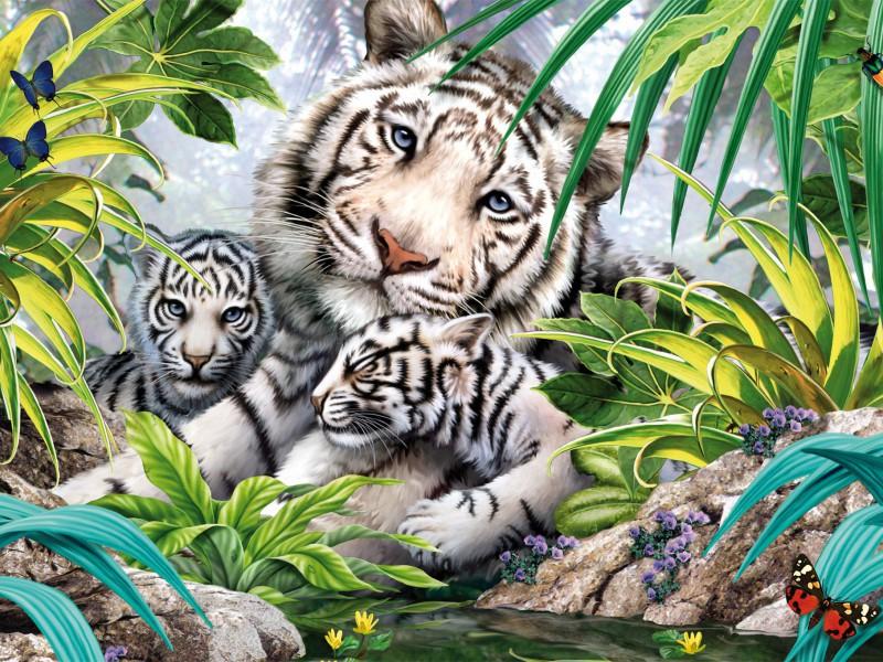 Пазл Собирать пазлы онлайн - Белые тигры