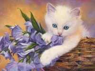 Собирать пазл Белый котенок онлайн