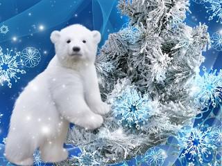 Собирать пазл Белый медвежонок онлайн