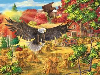 Собирать пазл Белоголовые орланы онлайн