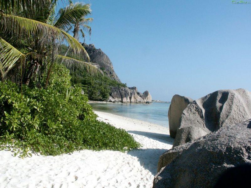 Пазл Собирать пазлы онлайн - Берег пальмы песок