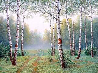 Собирать пазл Березовый лес онлайн