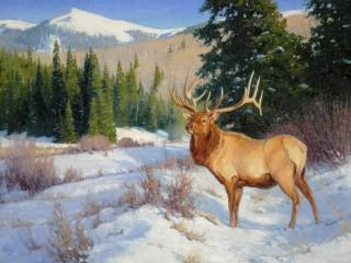 Собирать пазл Благородный олень онлайн