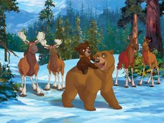 Собирать пазл Братец медвежонок онлайн