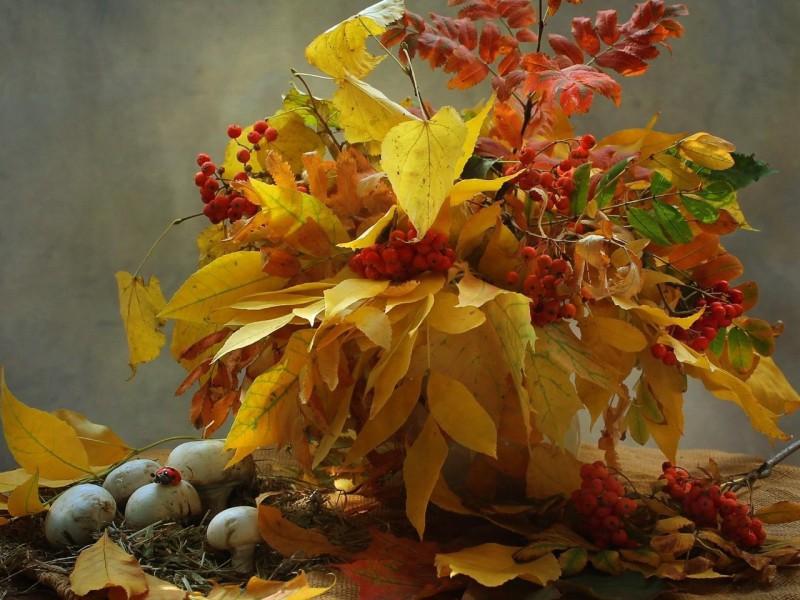 Пазл Собирать пазлы онлайн - Букет из листьев