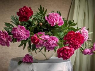 Собирать пазл Букет пионов в вазе онлайн