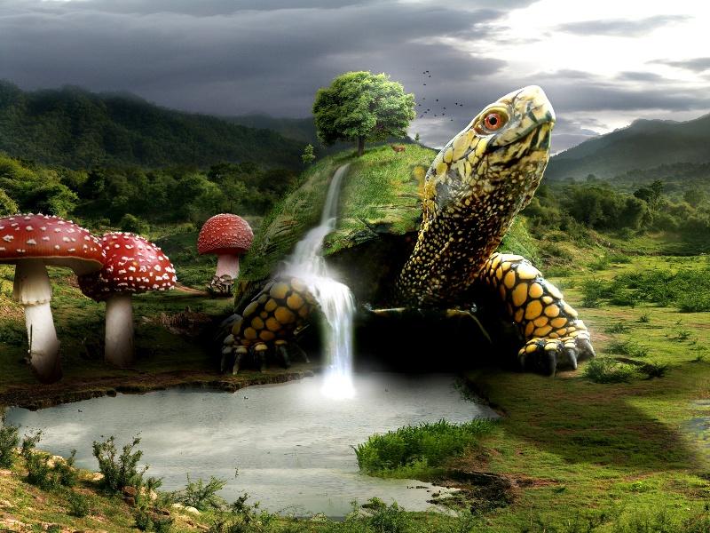 Пазл Собирать пазлы онлайн - Черепаха-земля