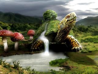 Собирать пазл Черепаха-земля онлайн