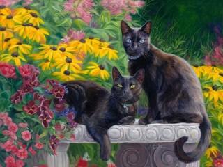 Собирать пазл Черные кошки онлайн
