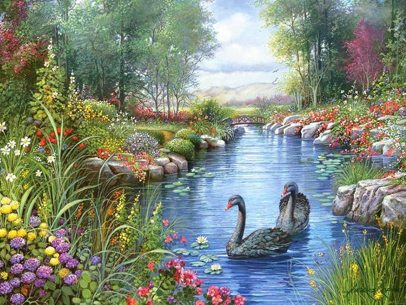 Пазл Собирать пазлы онлайн - Черные лебеди 2