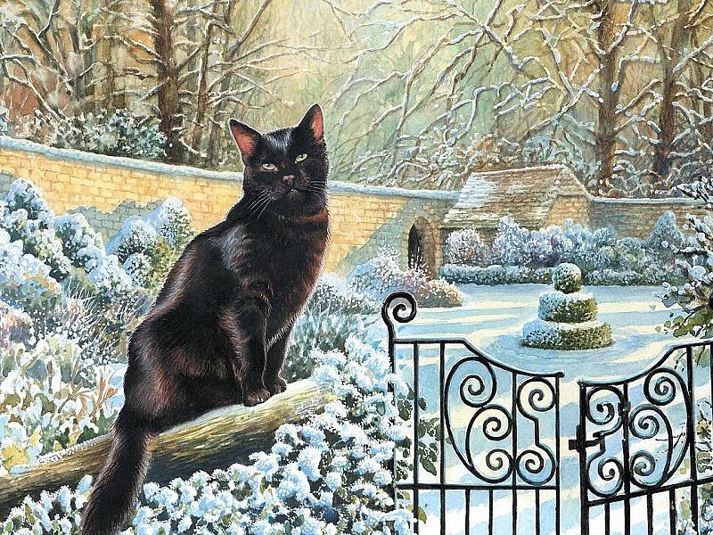 Пазл Собирать пазлы онлайн - Черный кот