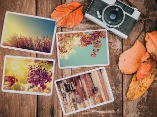 Собирать пазл Четыре фотографии онлайн