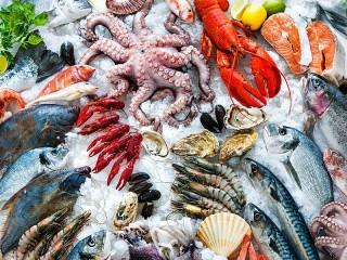 Собирать пазл Дары океана онлайн