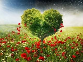 Собирать пазл Дерево-сердце онлайн