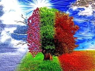 Собирать пазл Дерево сезонов онлайн