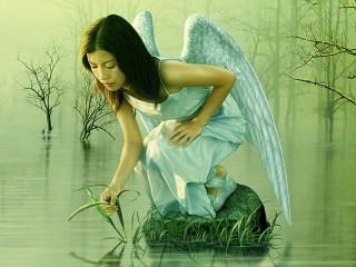 Собирать пазл Девушка ангел онлайн