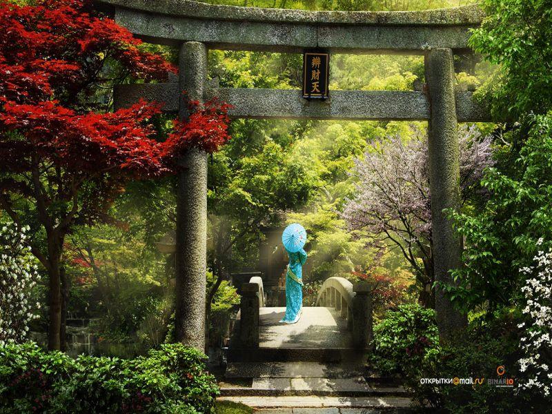 Пазл Собирать пазлы онлайн - Девушка в саду