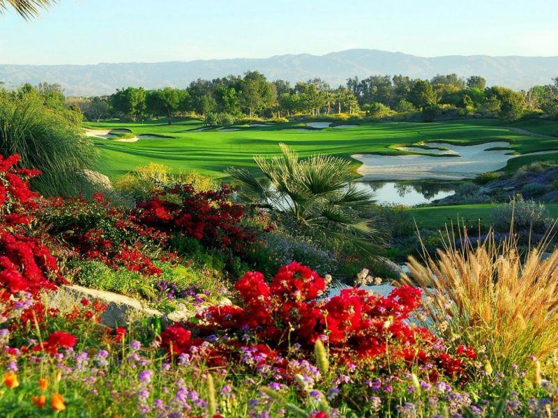 Пазл Собирать пазлы онлайн - Долина цветы озеро