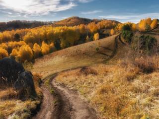 Собирать пазл Дорога через осень онлайн
