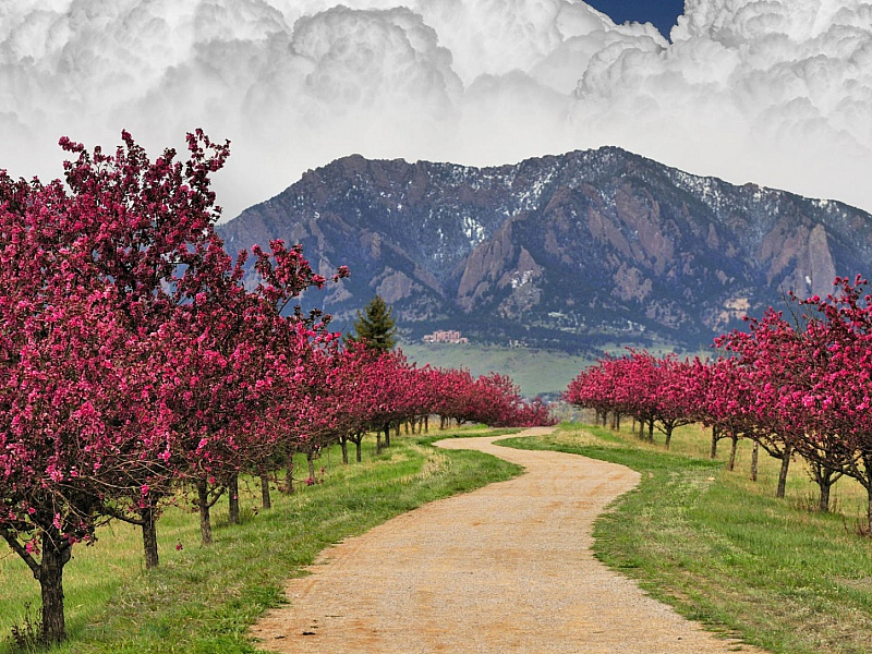 Пазл Собирать пазлы онлайн - Дорога горы облака
