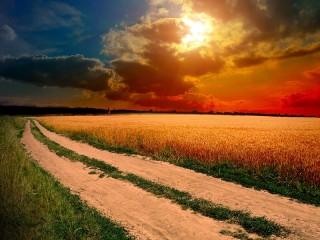 Собирать пазл Дорога в закат онлайн