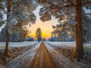 Собирать пазл Дорога в зиму онлайн