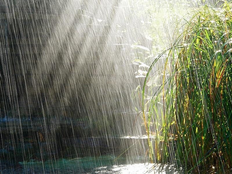 Пазл Собирать пазлы онлайн - Дождь